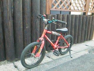 の 自転車 で 遊び 始めた 5 歳 ...